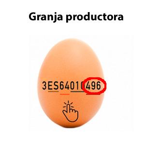 Granja productora de los huevos