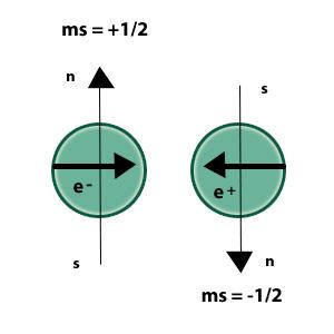 Número cuántico espín